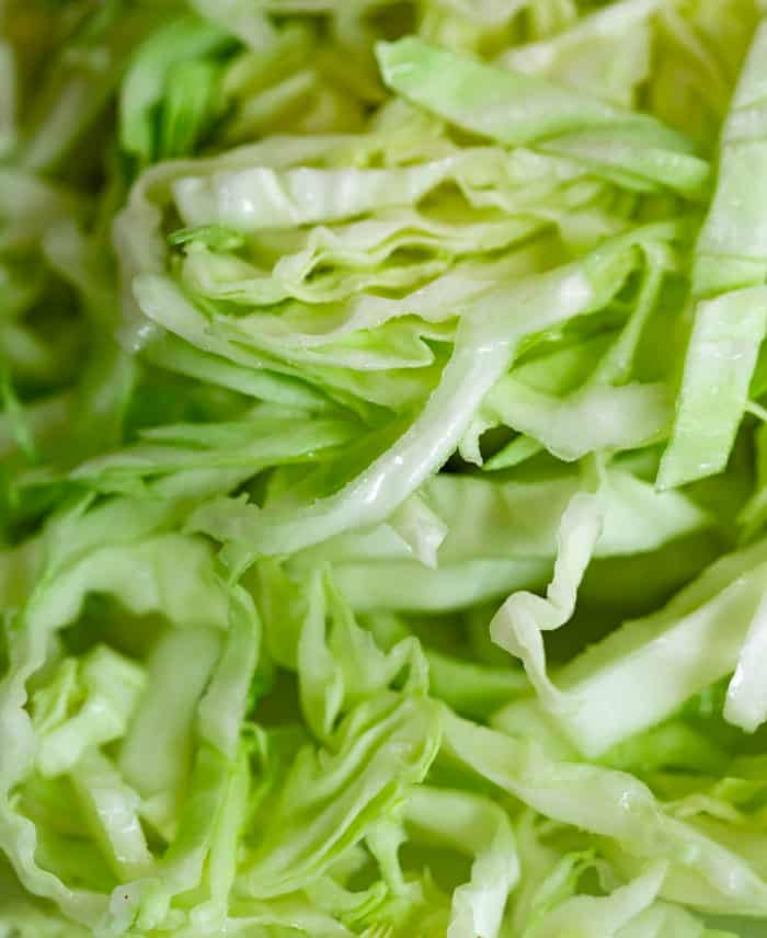 Macro image of watery shredded green cabbage.