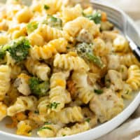A plate with Cheesy Chicken Noodle Casserole in a creamy mushroom sauce with broccoli and chicken.