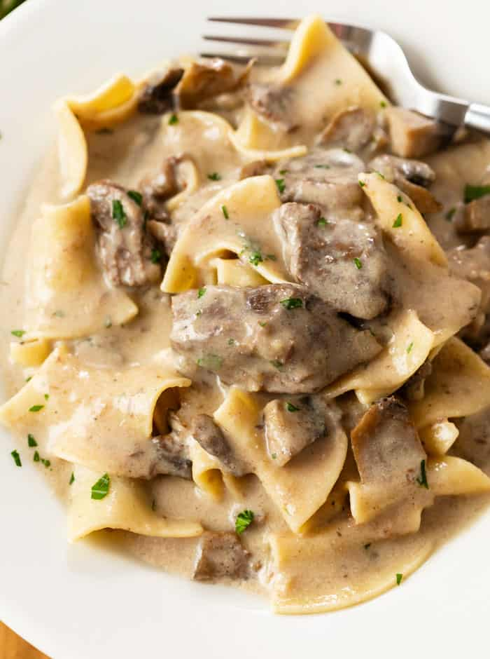 A white plate with egg noodles covered in a creamy Beef Stroganoff sauce. with mushrooms.