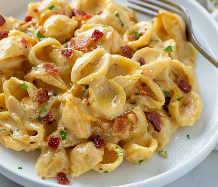 A white plate with Creamy Bacon Mac and Cheese with shell pasta.